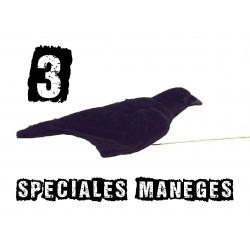 3 formes spéciales manège à corvidé