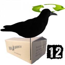 """Carton de 12 corbeaux """"tourne au vent"""""""
