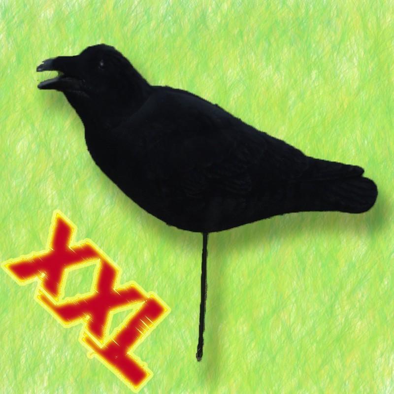 appelant corbeau magnum floqu xxl. Black Bedroom Furniture Sets. Home Design Ideas