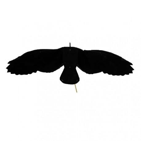 Hypaflap Corbeau