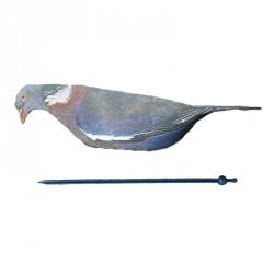 Pigeon néoprène HD