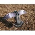 Pigeon Electrique à ailes battantes Lucky Flapper
