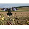 Pigeon Electrique à ailes tournantes Lucky Spinner