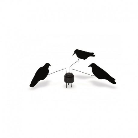 Manège à corbeau