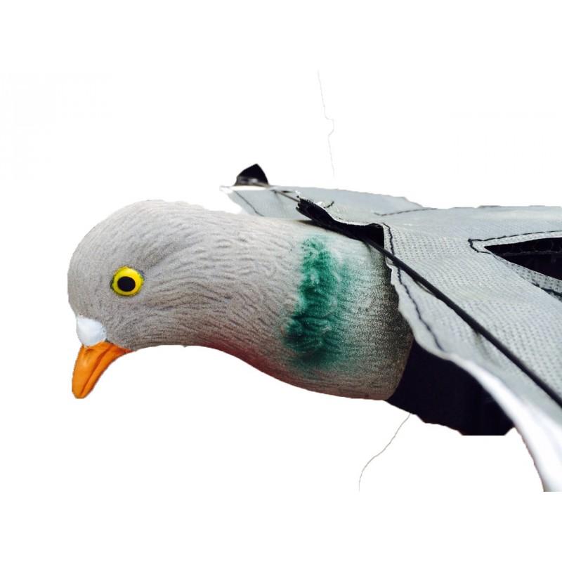 infatigable hypaflap chasser le pigeon forme blette. Black Bedroom Furniture Sets. Home Design Ideas